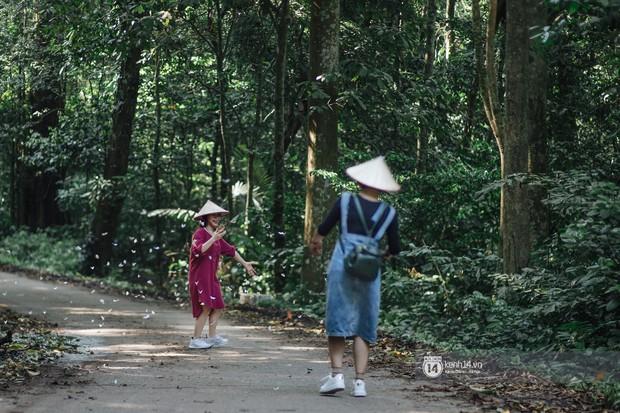 Chuyến đi Cúc Phương những ngày cuối mùa bướm rừng: Chốn thần tiên có vẻ đẹp riêng của sự muộn màng - Ảnh 5.