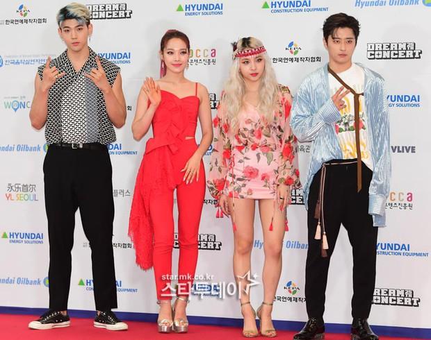Thảm đỏ Dream Concert 2019: Park Bom lên cân nhưng vẫn chiếm spotlight của Red Velvet và cả dàn nữ thần Kpop - Ảnh 21.