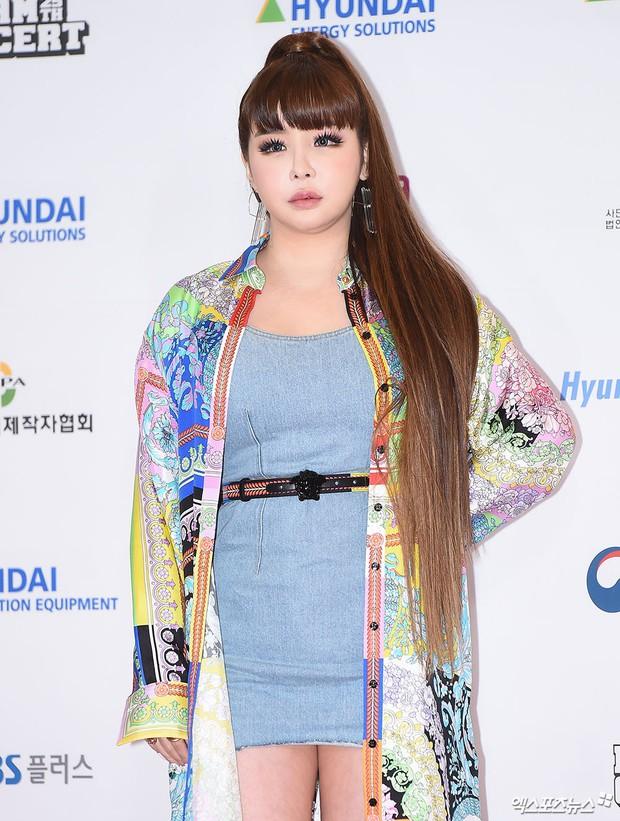 Thảm đỏ Dream Concert 2019: Park Bom lên cân nhưng vẫn chiếm spotlight của Red Velvet và cả dàn nữ thần Kpop - Ảnh 2.