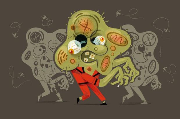 Trong cơ thể bạn có những tế bào zombie không chịu chết, vì chúng mà con người mới sinh, lão, bệnh, tử - Ảnh 1.
