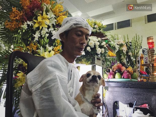 Chú chó Lucky được gia đình buộc tang trắng, quấn quýt bên linh cữu cố nghệ sĩ Lê Bình - Ảnh 1.