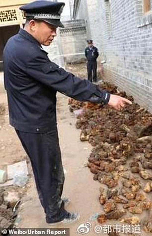 Đang đào đất xây bể bơi, phát hiện hơn 3.000 quả bom-đạn chưa nổ - Ảnh 3.