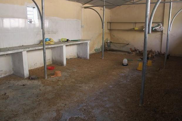 Trường hơn 16 tỷ bỏ hoang người dân tận dụng phơi rơm nuôi gà - Ảnh 15.