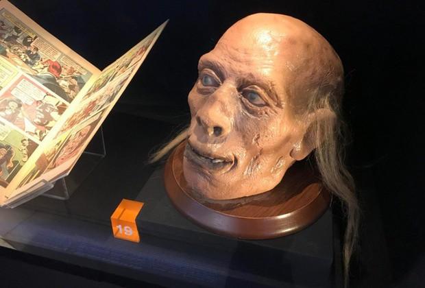 Câu chuyện về những thứ kỳ quái nhất từng được đem ra trưng bày trong bảo tàng: Não, thủ cấp và bộ phận sinh dục con người - Ảnh 6.