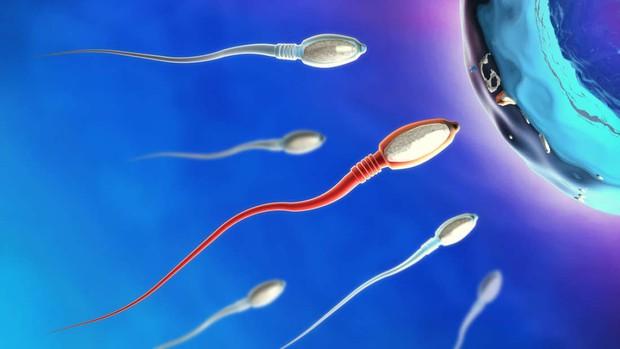Tinh trùng đàn ông ở đâu là yếu nhất? Xin thưa rằng ở đất nước đầy bất ngờ này - Ảnh 2.