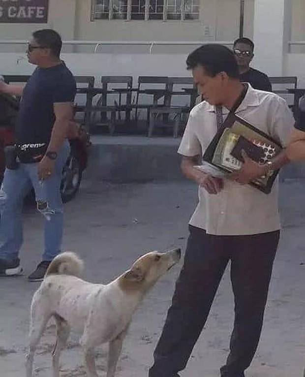 Rơi nước mắt với chú chó khóc nấc trước quan tài của giáo sư - Ảnh 4.