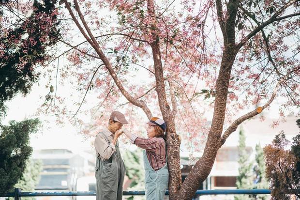 Bộ ảnh chụp ở Đà Lạt của couple U60: Dù thời gian có tàn nhẫn thế nào đi chăng nữa, tôi vẫn nắm tay bà đi hết cuộc đời này - Ảnh 12.