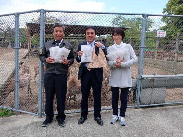 Từ năm ngoái đến nay, 6 con hươu Nara đã chết vì bội thực rác nhựa của du khách - Ảnh 5.