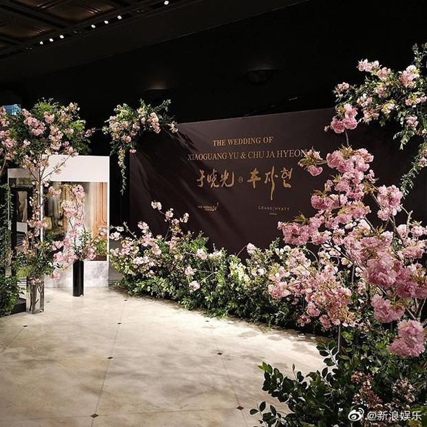Đám cưới Hoa - Hàn hot nhất hôm nay: Choo Ja Hyun hoá nữ thần diện váy cưới trắng tinh khôi, e ấp bên Vu Hiểu Quang - Ảnh 6.