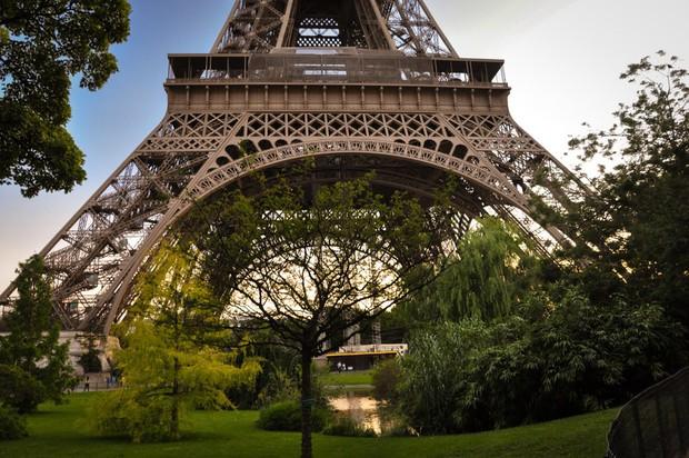 Paris sẽ xây dựng một khu vườn dành cho người đi bộ ngay dưới chân tháp Eiffel với trị giá hơn 80 triệu đô - Ảnh 3.