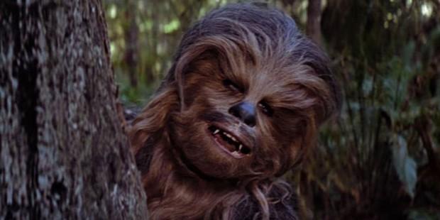 Diễn viên đóng vai Chewbacca huyền thoại trong Star Wars qua đời ở tuổi 74 - Ảnh 3.