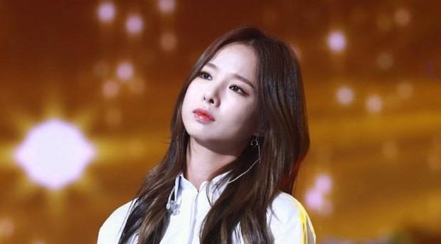 """Hội idol debut nhiều đến hết cả thanh xuân: Kang Daniel hay Mino (WINNER) cũng đều phải chào thua kỉ lục của """"nữ hoàng sexy"""" Kpop - Ảnh 4."""