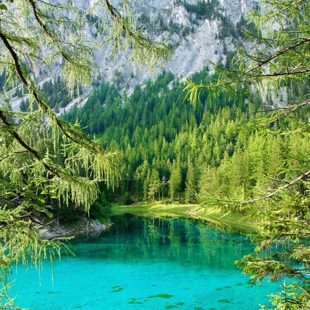 Mãn nhãn xen lẫn há hốc mồm với công viên ở Áo được ví như chốn thần tiên, mỗi năm chỉ xuất hiện 6 tháng rồi... mất tích - Ảnh 8.