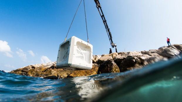 """10 sáng chế đỉnh cao đang góp phần """"cứu rỗi"""" đại dương, cái số 3 được tạo ra bởi một cô bé mới học lớp 6! - Ảnh 1."""