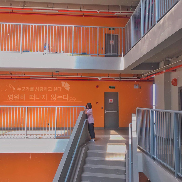 """5 trường Đại học sống ảo """"xịn"""" nhất Sài Gòn, cứ đứng vào là có ngay hình nghìn like khiến ai cũng gato - Ảnh 4."""