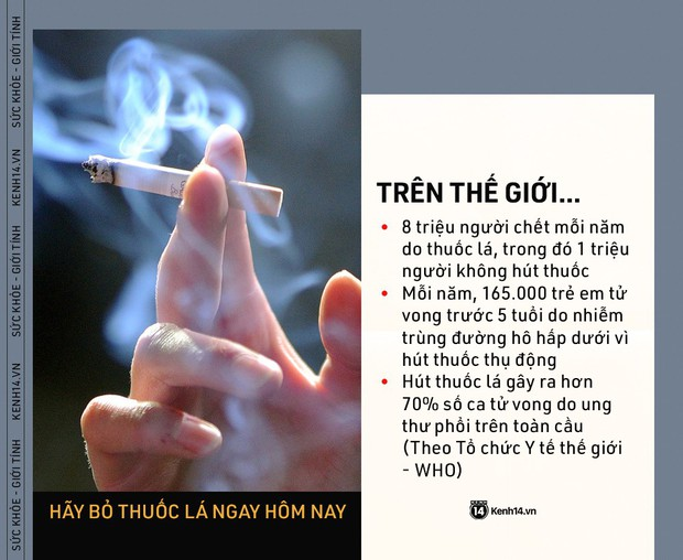 Ngày Thế giới Không Thuốc lá: những con số kinh hoàng cho thấy tác hại của thuốc lá ngày càng nghiêm trọng - Ảnh 1.