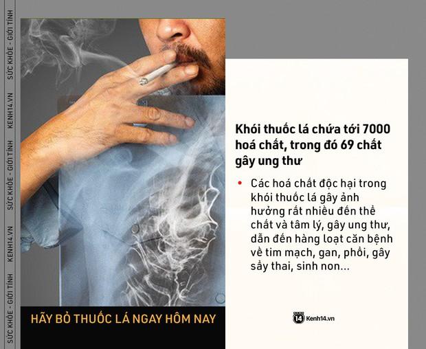 Ngày Thế giới Không Thuốc lá: những con số kinh hoàng cho thấy tác hại của thuốc lá ngày càng nghiêm trọng - Ảnh 3.
