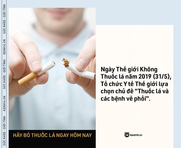Ngày Thế giới Không Thuốc lá: những con số kinh hoàng cho thấy tác hại của thuốc lá ngày càng nghiêm trọng - Ảnh 5.