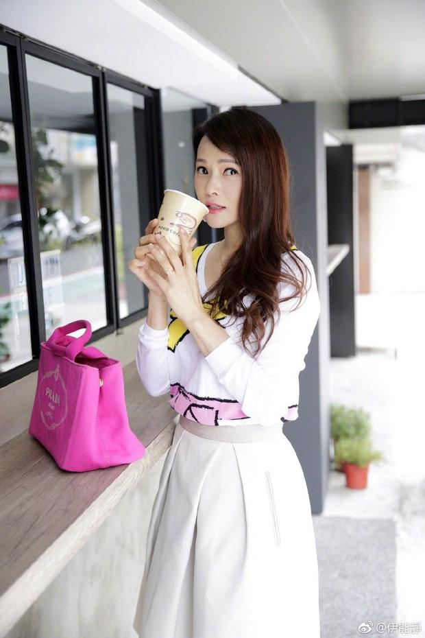 Y Năng Tịnh: Nữ thần nhan sắc xinh đẹp nhất xứ Đài, U50 nhưng ai cũng ngỡ tưởng là mới chỉ đôi mươi - Ảnh 11.