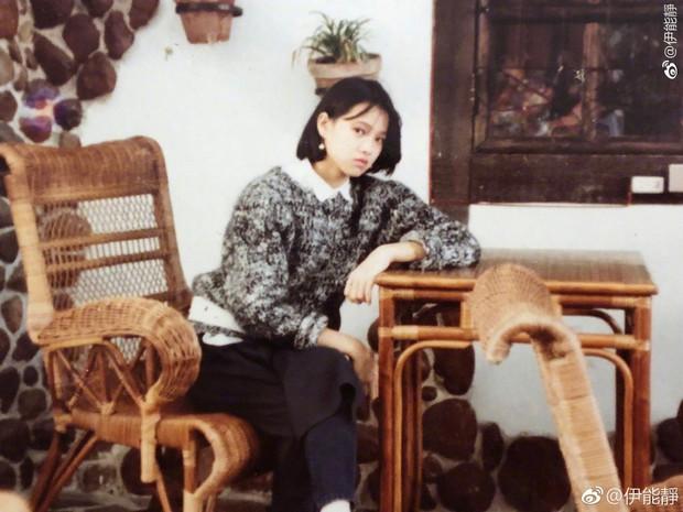 Y Năng Tịnh: Nữ thần nhan sắc xinh đẹp nhất xứ Đài, U50 nhưng ai cũng ngỡ tưởng là mới chỉ đôi mươi - Ảnh 2.