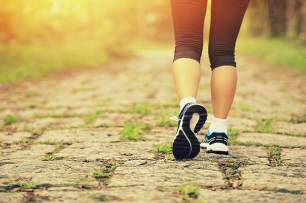Chuyên gia Harvard: cách đi bộ cực dễ giảm 41% nguy cơ chết sớm  - Ảnh 1.