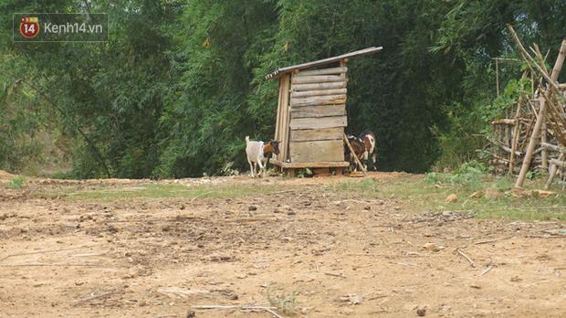 Bản làng nơi những ông trùm ma túy gieo rắc cái chết trắng: Cha mẹ chết vì HIV, con trẻ mồ côi sống lay lắt từng ngày - Ảnh 6.