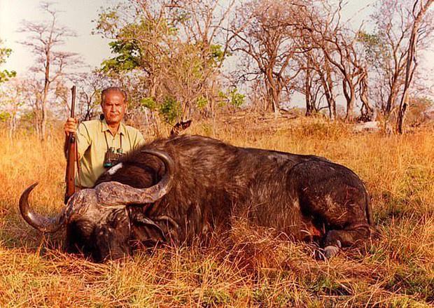 Ra tay sát hại hơn 1300 con voi, thợ săn tuyên bố: Loài voi sẽ sớm tuyệt chủng, thật đáng tiếc! - Ảnh 3.