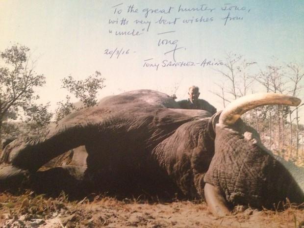 Ra tay sát hại hơn 1300 con voi, thợ săn tuyên bố: Loài voi sẽ sớm tuyệt chủng, thật đáng tiếc! - Ảnh 1.