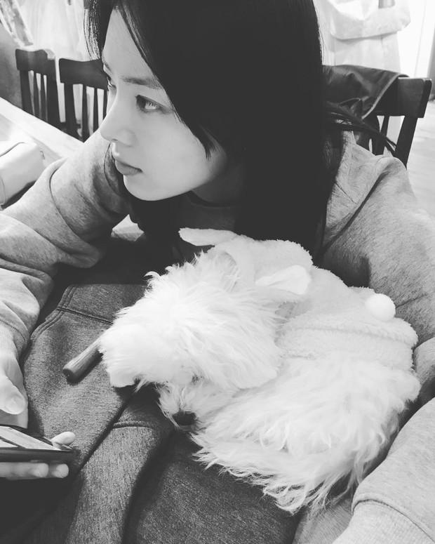 Tìm ra nữ diễn viên Hàn bị đâm tử vong trong tai nạn liên hoàn: Cựu idol đẹp mỹ miều, qua đời chỉ sau 2 tháng cưới - Ảnh 6.
