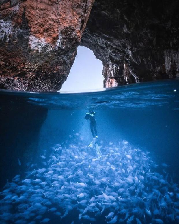 30 khoảnh khắc đẹp đến nghẹt thở từ vòng chung kết Cuộc thi ảnh Du lịch Địa lý Quốc gia 2019 - Ảnh 14.