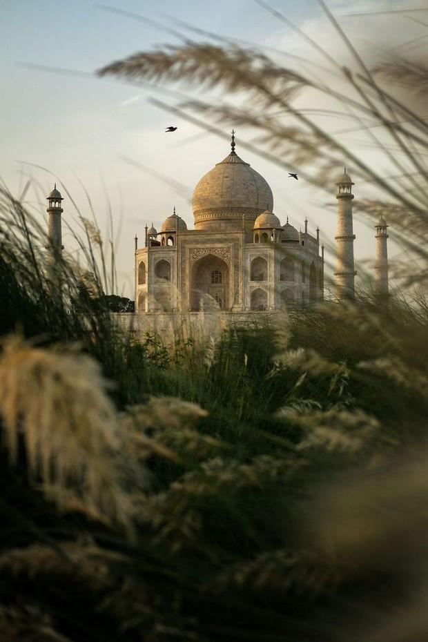 30 khoảnh khắc đẹp đến nghẹt thở từ vòng chung kết Cuộc thi ảnh Du lịch Địa lý Quốc gia 2019 - Ảnh 20.