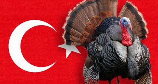 Con gà gây lú nhất quả đất: Người Anh gọi là Thổ Nhĩ Kỳ, nhưng người Thổ Nhĩ Kỳ lại gọi tên Ấn Độ - Ảnh 2.