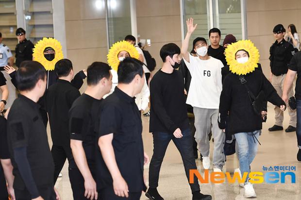 Hôm nay ra sân bay mặc gì thế BTS? - Một bó hoa hướng dương vàng tươi biết hát! - Ảnh 6.