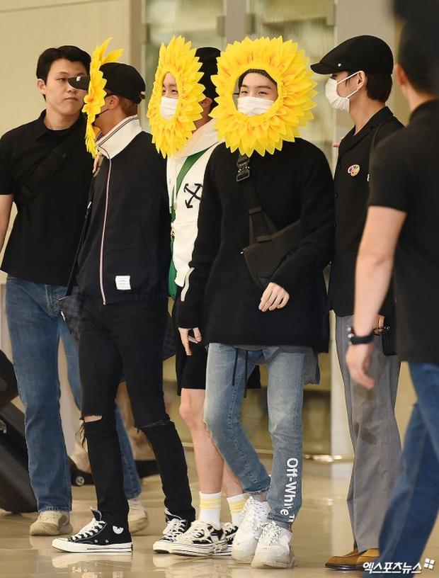 Hôm nay ra sân bay mặc gì thế BTS? - Một bó hoa hướng dương vàng tươi biết hát! - Ảnh 5.