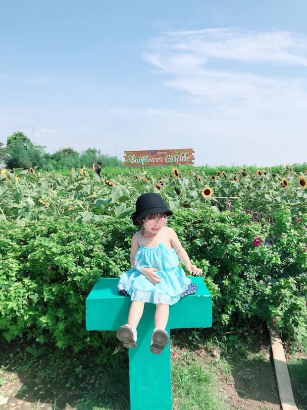 """Trời 38 độ hí hửng lên vườn hướng dương chụp hình thơ mộng, cô nàng bị cư dân mạng chế ảnh đi muôn nơi: """"Nắng thế này hoa héo hết rồi, chị hiểu hông?"""" - Ảnh 7."""
