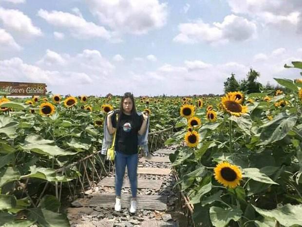 """Trời 38 độ hí hửng lên vườn hướng dương chụp hình thơ mộng, cô nàng bị cư dân mạng chế ảnh đi muôn nơi: """"Nắng thế này hoa héo hết rồi, chị hiểu hông?"""" - Ảnh 12."""