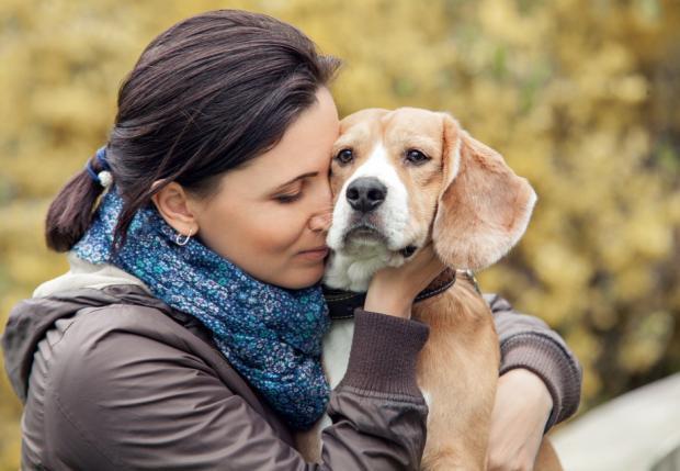 Bị trộm vào khoắng sạch đồ trong nhà, chàng trai chỉ xin được trả lại ảnh của cô chó đã mất - Ảnh 2.
