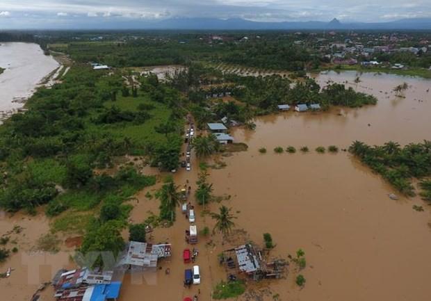 Indonesia: Hàng nghìn người phải sơ tán do lũ lụt nghiêm trọng - Ảnh 1.