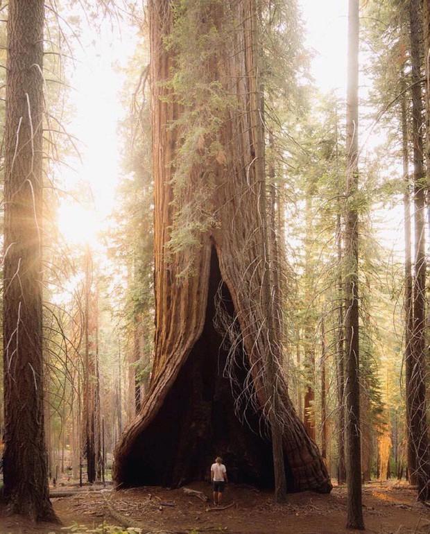 Thiên nhiên đôi khi kỳ ảo đến mức nếu không được chụp lại, chẳng ai tin đó là thật - Ảnh 5.