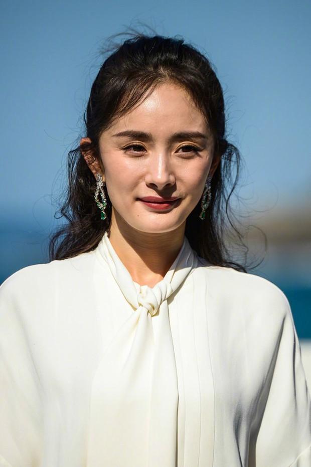 4 chị em họ Dương cùng cha khác ông nội của làng phim Hoa Ngữ: Người tình duyên lận đận, kẻ bất tài nhưng vẫn nổi bất chấp - Ảnh 4.