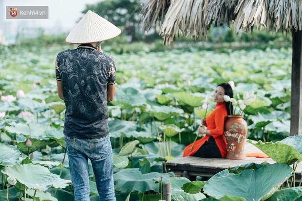 Đầm sen ở Nhật Tân có gì hot mà người dân Hà Nội ùn ùn kéo đến, lội xuống hồ chụp ảnh mỗi ngày? - Ảnh 20.
