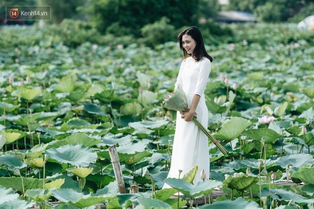 Đầm sen ở Nhật Tân có gì hot mà người dân Hà Nội ùn ùn kéo đến, lội xuống hồ chụp ảnh mỗi ngày? - Ảnh 6.