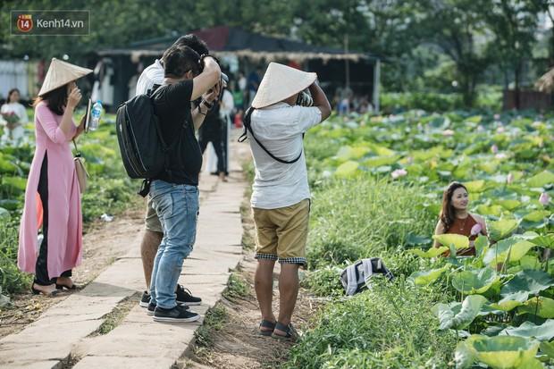 Đầm sen ở Nhật Tân có gì hot mà người dân Hà Nội ùn ùn kéo đến, lội xuống hồ chụp ảnh mỗi ngày? - Ảnh 10.