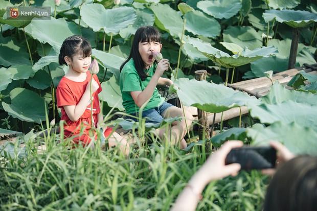 Đầm sen ở Nhật Tân có gì hot mà người dân Hà Nội ùn ùn kéo đến, lội xuống hồ chụp ảnh mỗi ngày? - Ảnh 17.