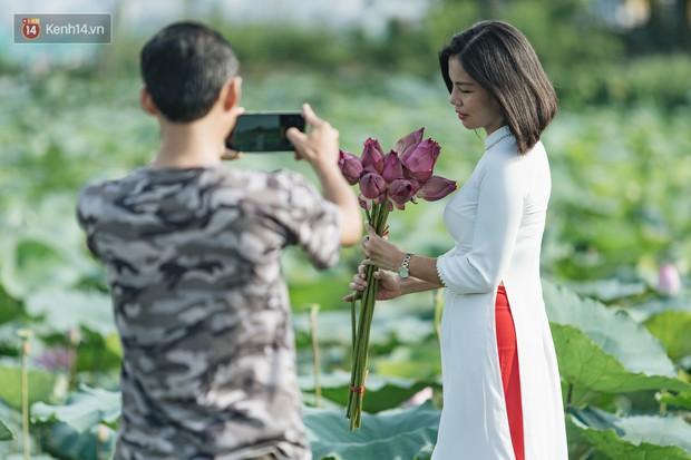 Đầm sen ở Nhật Tân có gì hot mà người dân Hà Nội ùn ùn kéo đến, lội xuống hồ chụp ảnh mỗi ngày? - Ảnh 18.