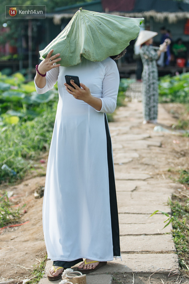Đầm sen ở Nhật Tân có gì hot mà người dân Hà Nội ùn ùn kéo đến, lội xuống hồ chụp ảnh mỗi ngày? - Ảnh 14.