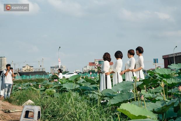 Đầm sen ở Nhật Tân có gì hot mà người dân Hà Nội ùn ùn kéo đến, lội xuống hồ chụp ảnh mỗi ngày? - Ảnh 11.