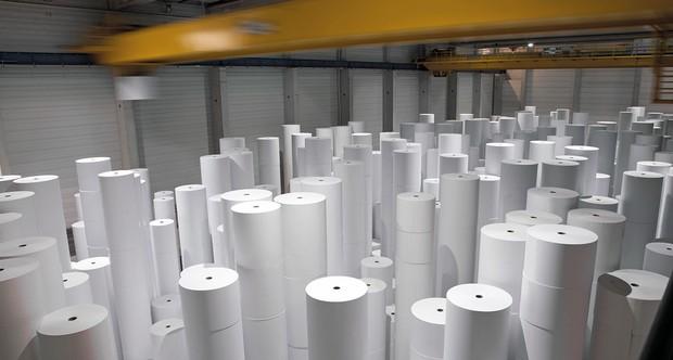 Người ta có thể sản xuất được bao nhiêu giấy từ một cái cây nhỉ? Đáp án đây này - Ảnh 1.