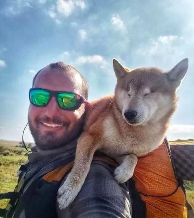 Câu chuyện của chú chó mù bị trầm cảm, được ông chủ cõng đi khắp thế giới cho khuây khỏa - Ảnh 4.