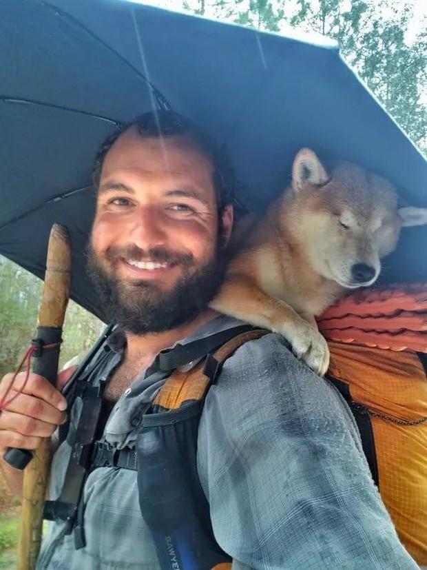 Câu chuyện của chú chó mù bị trầm cảm, được ông chủ cõng đi khắp thế giới cho khuây khỏa - Ảnh 5.